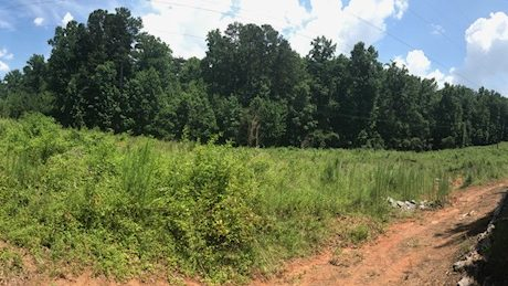 SALE: 22 +/- Acres - Sugarhill GA